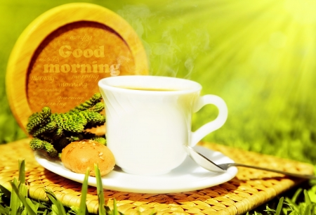 Morning beverage, tea or coffee with french crouton over fresh green grass