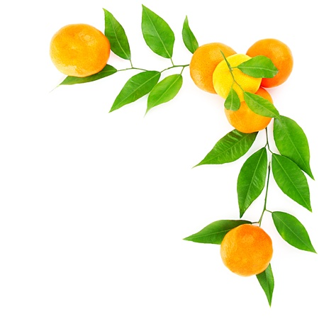 Fresh mandarins border isolated on white background, healthy eating conceptの写真素材