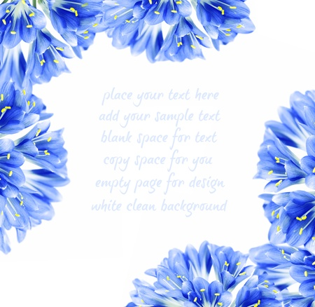 Abstract blue fresh flower border, isolated on white background with text space