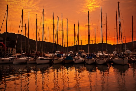 Yacht port over orange sunset with row of luxury sailboats