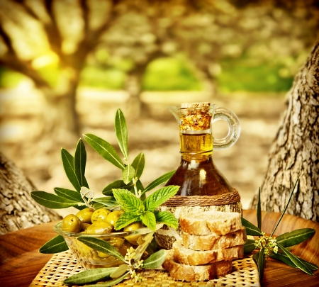Olives still life, fresh food in garden of olive trees, farm land at countryside of Lebanon, homemade healthy olive oil and bread, harvest time