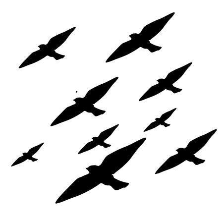 Illustration pour Pattern graphic of black animals. Group birds vector background - image libre de droit