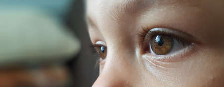 Photo pour Closeup of beautiful boy eye banner. Childred eye background. - image libre de droit