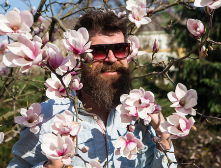 Brutal macho smiling near tender flowers on sunny day. Man with beard and mustache wears sunglasses, magnolia flowers background. Hipster with fashionable sunglasses.