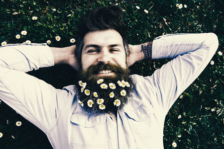 Relaxing concept. Hipster on happy face lays on grass, top view. Man with beard and mustache enjoys spring, green meadow background. Guy looks nicely with daisy or chamomile flowers in beard