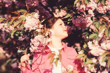 blossom smell, allergy. small girl child in spring flower bloom. skincare spa. Natural cosmetics for skin. happy girl in cherry flower. Sakura tree blooming. summer. Childhood beauty. Happy moments