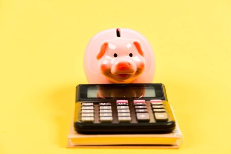 piggy bank with calculator. Moneybox. bookkeeping. financial report. family budget management. business start up. Working with numbers. saving money. First salary. Helpful.