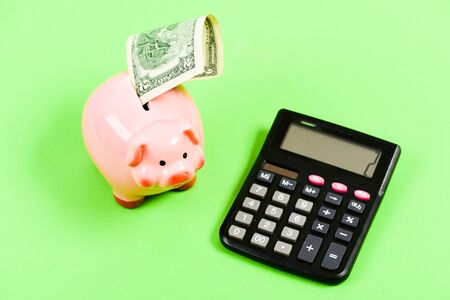 Photo for Credit debt concept. Economics and profit management. Economics and finance. Investing gain profit. Economics and business administration. Piggy bank money savings. Piggy bank pig and calculator. - Royalty Free Image