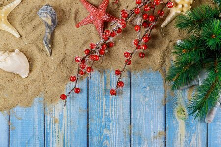 Foto de Holiday vacation with starfish and sea shells on a branch of christmas tree old blue wooden background - Imagen libre de derechos