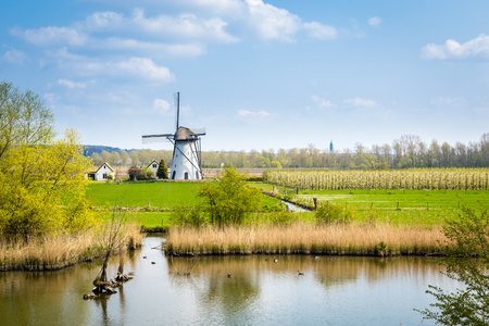 Photo pour White Dutch windmill near Kesteren in Gelderland in the Netherland - image libre de droit