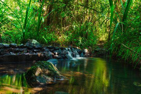 Photo pour Beautiful mountain stream flow through abundant forests in rainforest of Koh yao yai,Phang Nga,Thailand - image libre de droit