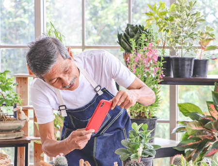 Photo pour Senior people lifestyle and gardening concept. Active  Asian elderly male gardener standing  in plant shop indoor,wearing  bib taking photo of his plant by mobile phone and smiling happily. - image libre de droit