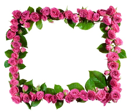 Frame made of beautiful pink roses and blossoms, isolated on white  Great as a greetings card, for a love message, for a wedding and so on