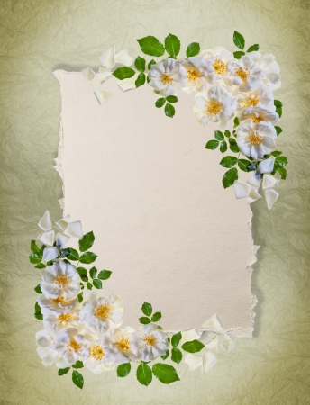 Vintage white roses frame on distressed paper background with room for a message  Great as a greetings card, for a love message and so on  Plenty of copy space