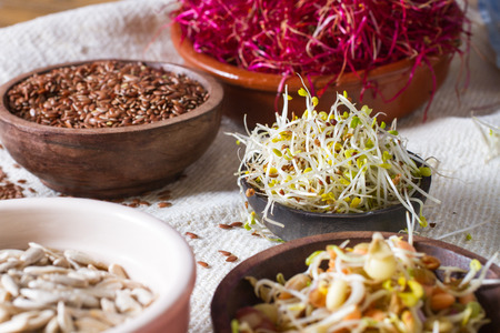 Colourful and healthy crunchy mixed seeds and various sprouts. Alfalfa, bean sprouts, red beet sprouts, linseed.
