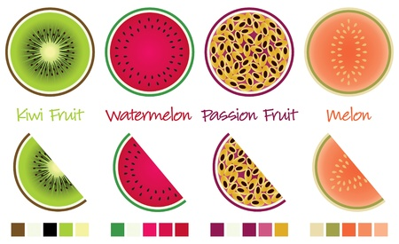 Fruit slices and wedges in vector format complete with swatches