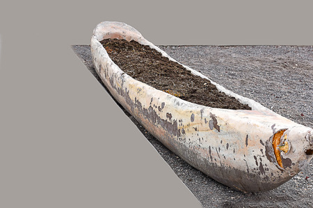 The dugout canoe is light narrow boat made by cutting out the inside of a tree trunk.
