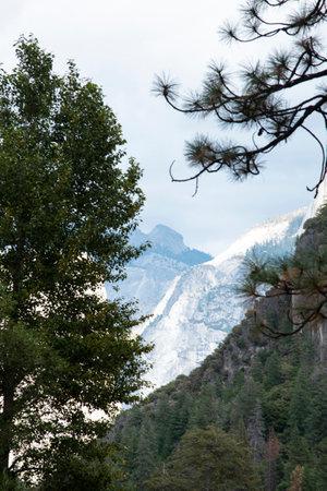 Photo pour A landscape of grassland , granite mountain and pine trees forest in Yosemite National Park. - image libre de droit