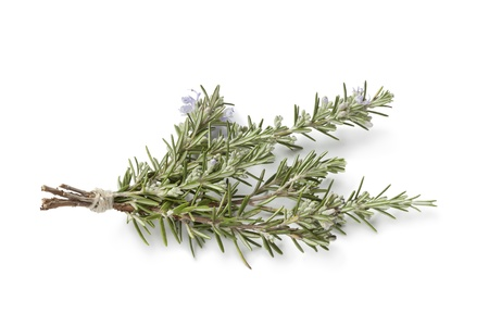 Bouquet of fresh blooming rosemary on white background