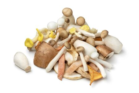 Photo pour Mixture of fresh raw variation mushrooms isolated on white background  - image libre de droit