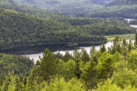 Parc Maurice, view of the Landscape with forests and lake, Kanada