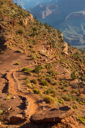 On south kaibab trail in the morning, Grand Canyon, Arizona, USA