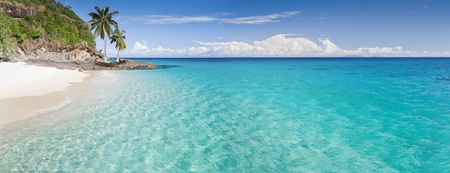 Photo pour Desert island panorama with palm trees on the beach - image libre de droit