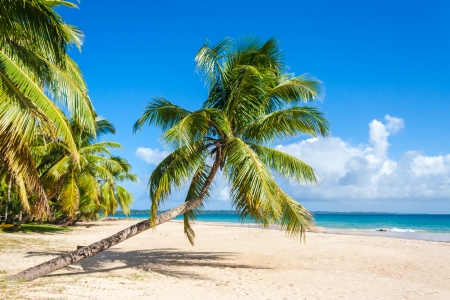 Tropical landscape from Sainte Marie Island