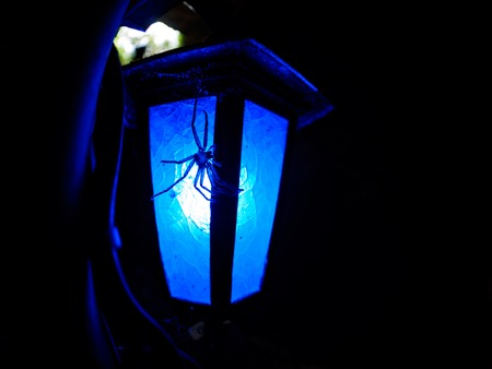 青の洞窟の写真イラスト素材 Foryourimages