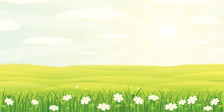 Beauty Summer or Spring Landscape illustration