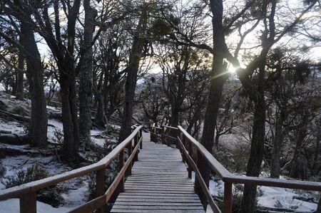 Ushuaia footway