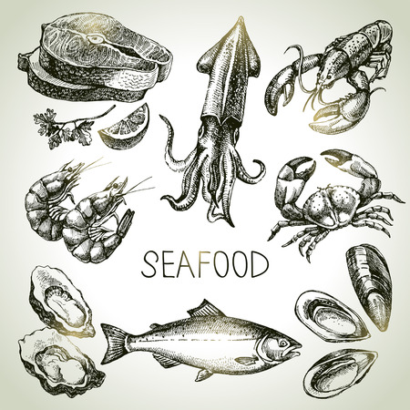 Illustrazione per Hand drawn sketch set of seafood. Vector illustration - Immagini Royalty Free