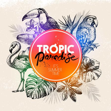 Illustration pour Hand drawn sketch tropical paradise plants and birds frame background. Vector illustration - image libre de droit