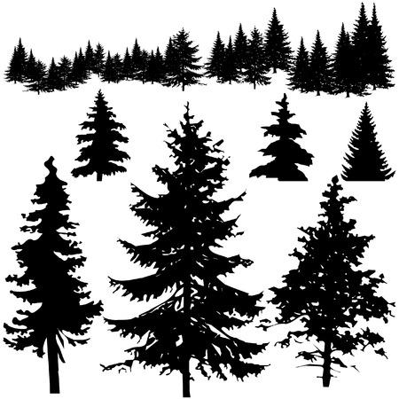 Illustration pour Detailed vectoral pine tree silhouettes - image libre de droit