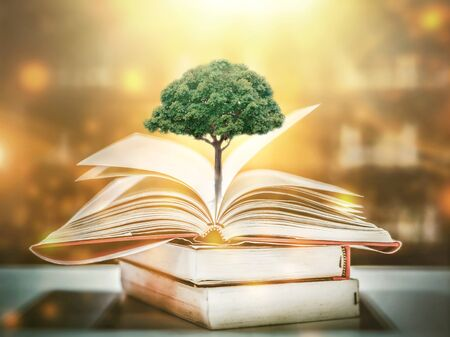 Photo pour education concept with tree of knowledge planting on opening old big book in library with textbook, stack piles of text archive and aisle of bookshelves in school study class room - image libre de droit