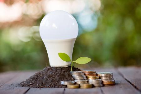 Photo pour Energy saving LED BULB ECO With the environment - image libre de droit