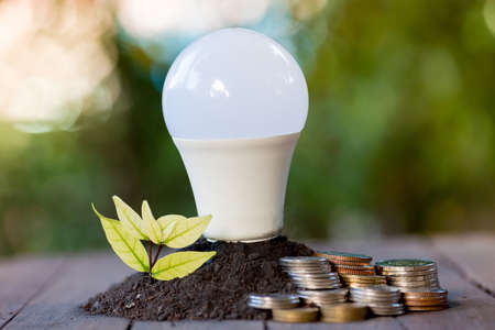 Photo for Energy saving LED BULB ECO With the environment - Royalty Free Image