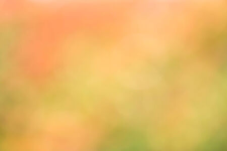 Green and red leaf blur for backgroundの素材 [FY31034875865]