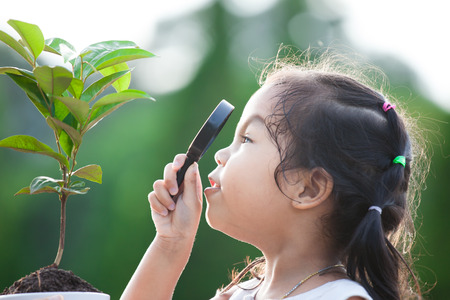 Cute asian little child girl looking through a magnifying glass on young tree in the park