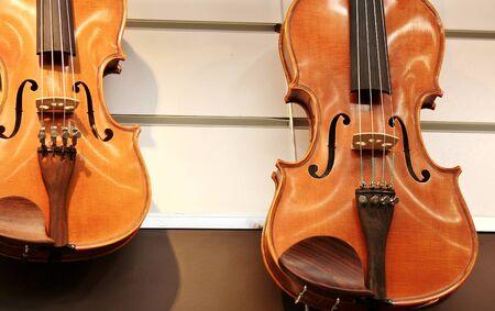 violin body, strings and fingerboard