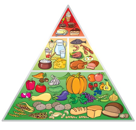 Illustration of food pyramid