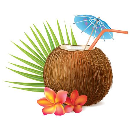 Vektor für Coconut drink. Contains transparent objects. EPS10 - Lizenzfreies Bild