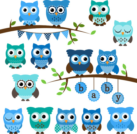 Vector Collection of Boy Baby Shower Themed Owls and Branchesのイラスト素材
