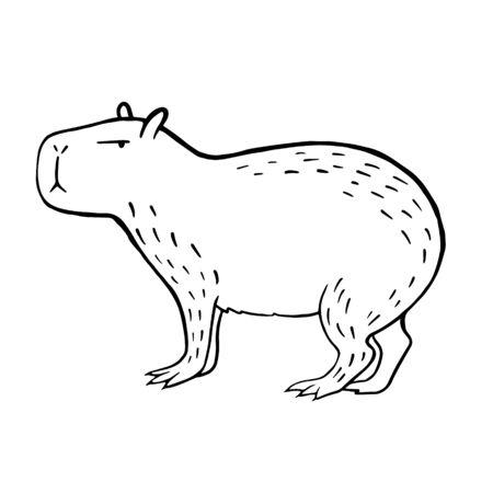 Illustration pour Capybara. Vector linear illustration of a capybara. Doodle style animal drawing - image libre de droit
