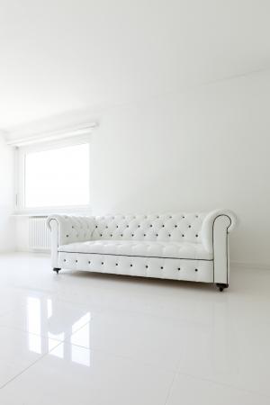 interior, leather sofa  in white room