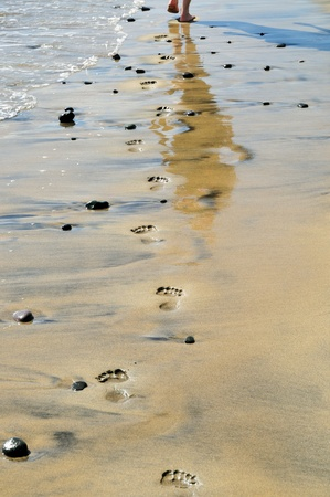 footprints on the beach, near the water