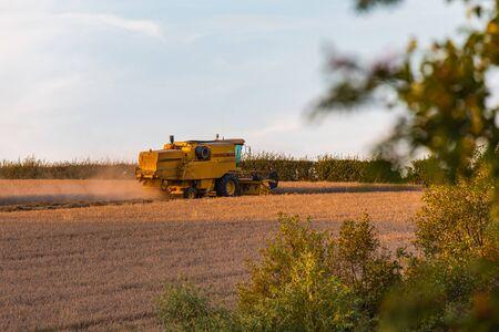 Foto für SHEFFIELD, UK - 24TH AUGUST 2019: Side Profile of a New Holland TX32 Combine Harvester working a wheat field during sunset - Lizenzfreies Bild