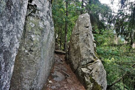 Footpath between two massive rocks on the Sentiers des Roches in the Vosges, France
