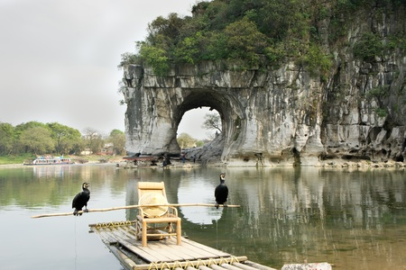 Cormorant birds in front of Elephant Trunk Hill, Scenes from the City of Guilin,