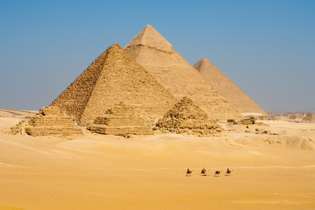 A line of camels walks among the all pyramids of Giza in a row